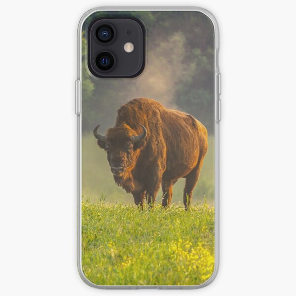 Wisent or european bison steaming in the morning light iPhone Soft Case
