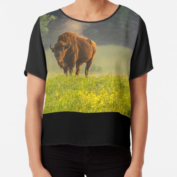 Wisent or european bison steaming in the morning light Chiffon Top