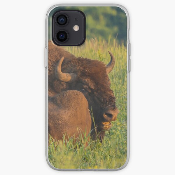 Laughing european bison, also known as wisent iPhone Soft Case