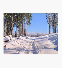 Road In Snow Photographic Print