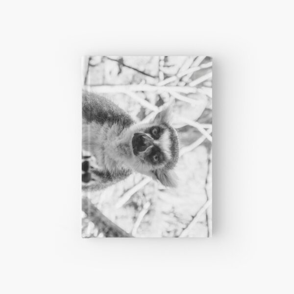 Lemur. Cool. Sideways. Hardcover Journal