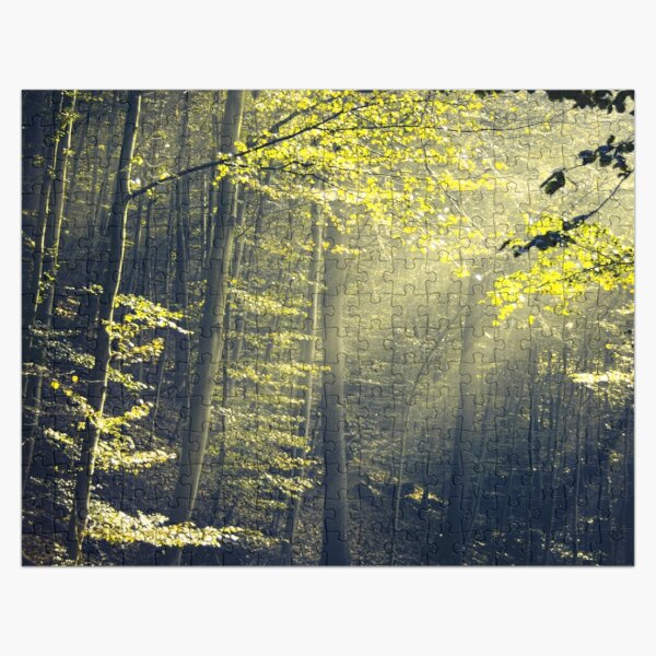 Being There - Morning Light in Forest Jigsaw Puzzle