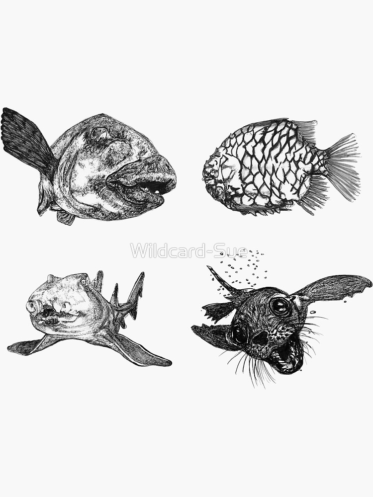 Sea 4 -Blue Groper, Pineapple Fish, Port Jackson and Seal x 4  by Wildcard-Sue