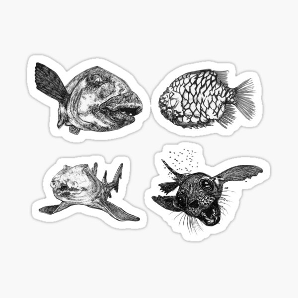 Sea 4 -Blue Groper, Pineapple Fish, Port Jackson and Seal x 4  Sticker