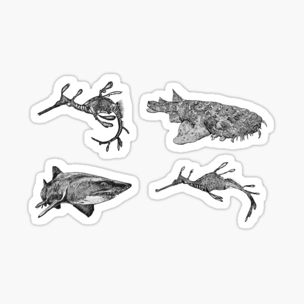 Sea 6-Sea Dragons and Sharks x 4  Sticker