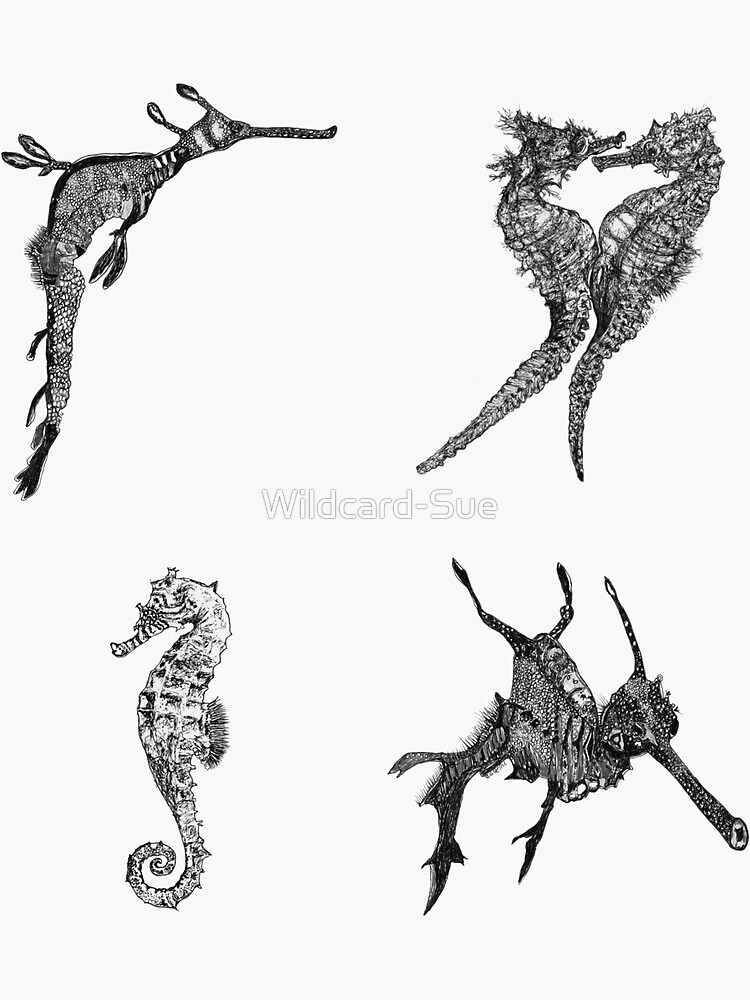 Sea 7-Sea Dragons and Seahorses x 4  by Wildcard-Sue