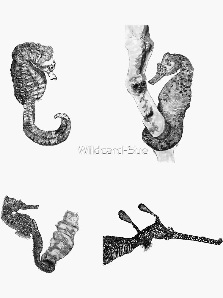 Sea 8-  Seahorses and Sea Dragon x 4  by Wildcard-Sue
