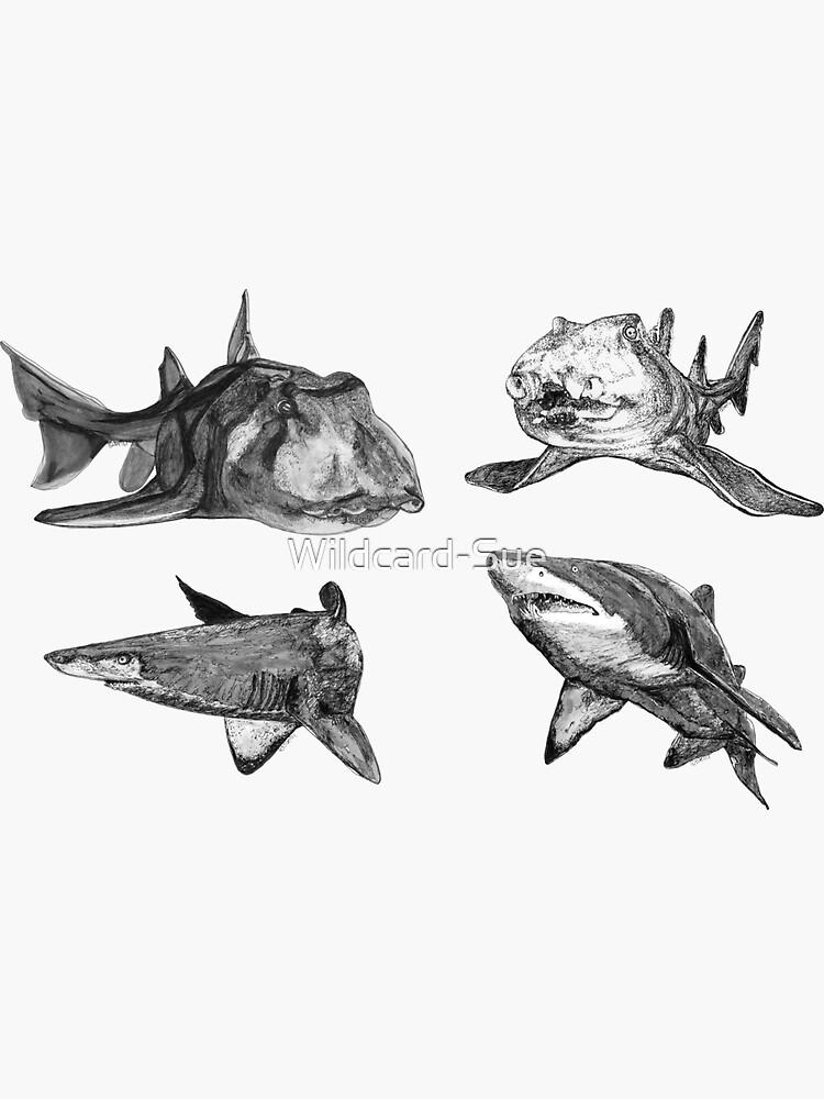 SHARKS! Grey Nurse and Port Jackson sharks x 4  by Wildcard-Sue