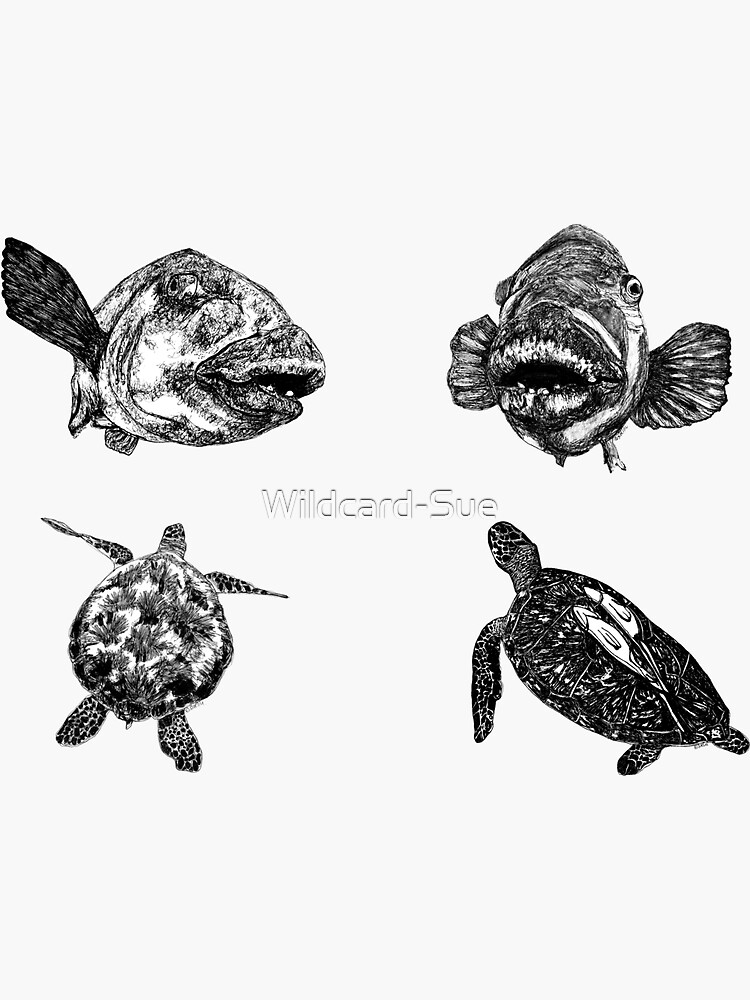 Sea 9 -  Turtles and Blue Groper x 4  by Wildcard-Sue