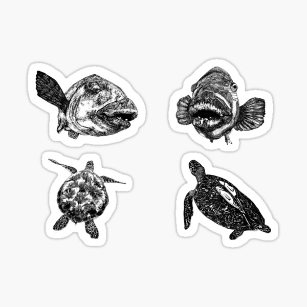Sea 9 -  Turtles and Blue Groper x 4  Sticker