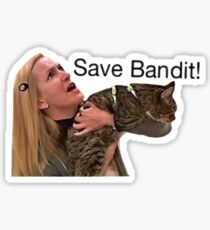Save bandit Sticker
