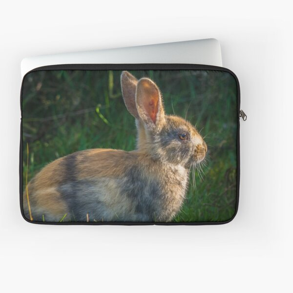 Cute wild rabbit Laptop Sleeve