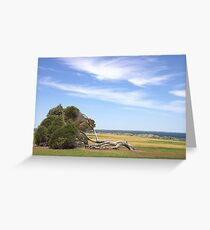When A Great Tree Falls..... Greeting Card