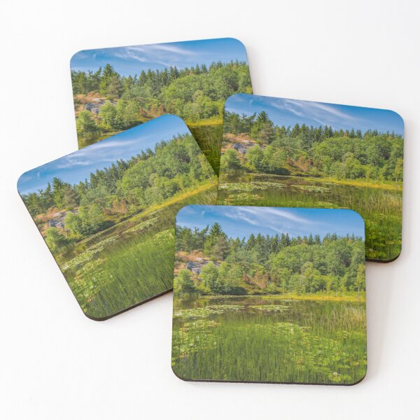 Idyllic lake beneath the cliffs in the woods Coasters (Set of 4)