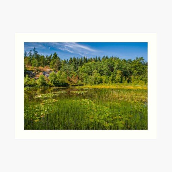Idyllic lake beneath the cliffs in the woods Art Print