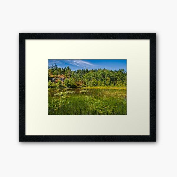 Idyllic lake beneath the cliffs in the woods Framed Art Print