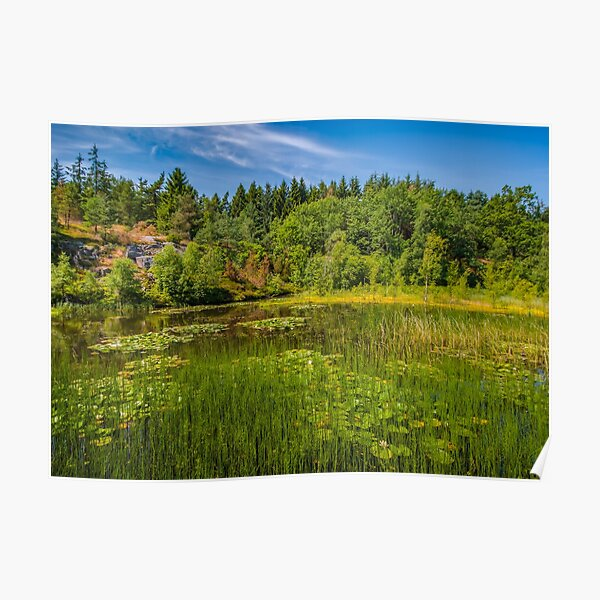 Idyllic lake beneath the cliffs in the woods Poster