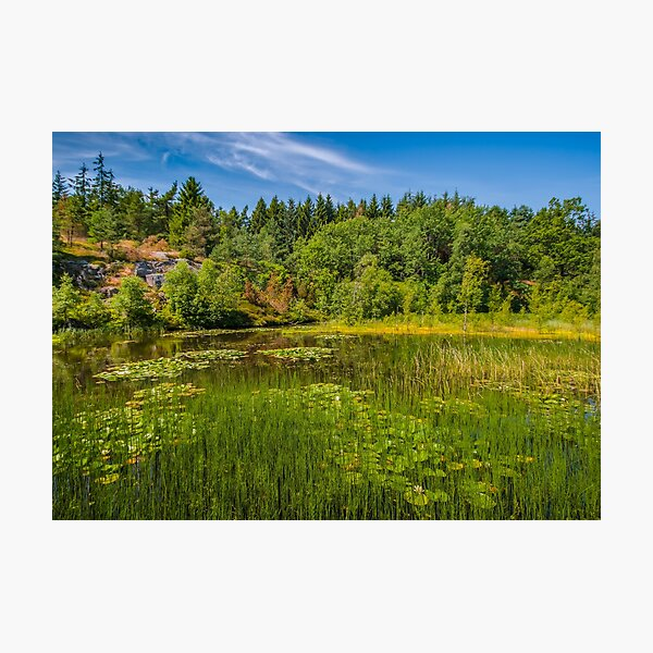 Idyllic lake beneath the cliffs in the woods Photographic Print