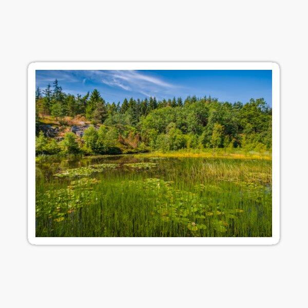 Idyllic lake beneath the cliffs in the woods Sticker