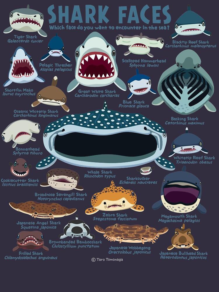 Shark Faces by vimytaro