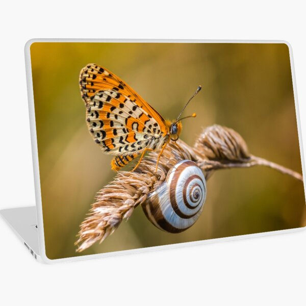 Butterfly (spotted fritillary) hanging out with a snail Laptop Skin