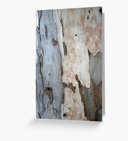 Bark Of A Eucalyptus Tree Greeting Card