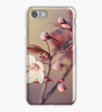spring in the air iPhone Case/Skin