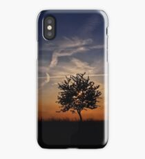 Sunset Review iPhone Case/Skin