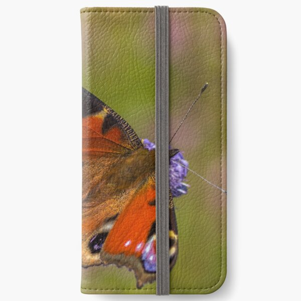 The European peacock has great fake eyes on the wings iPhone Wallet