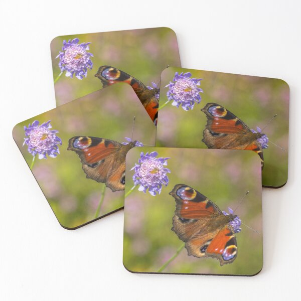 The European peacock has great fake eyes on the wings Coasters (Set of 4)