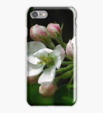 apple tree bloosoms iPhone Case/Skin