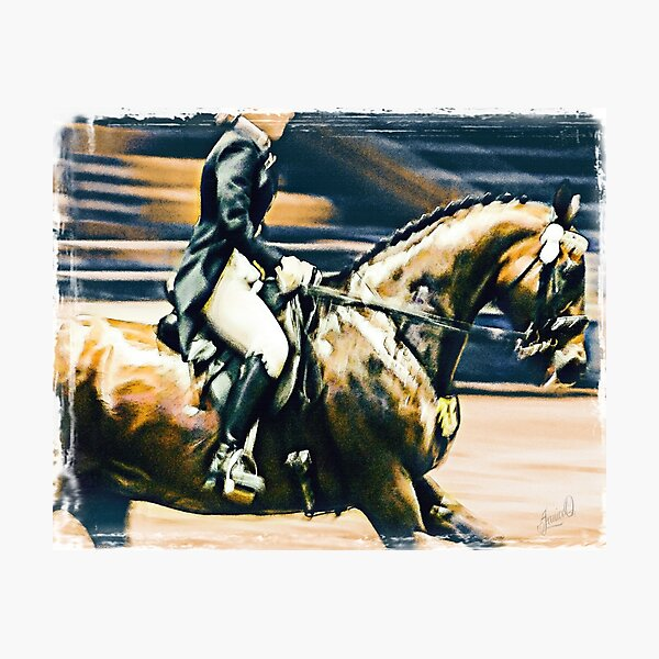 Dressage Rider Photographic Print