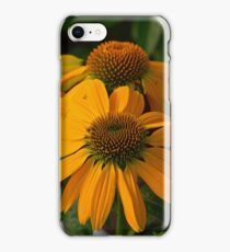 Orange echinacea iPhone Case/Skin