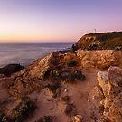 On a Hilltop - Cape Schanck, Victoria, Australia by Sean Farrow
