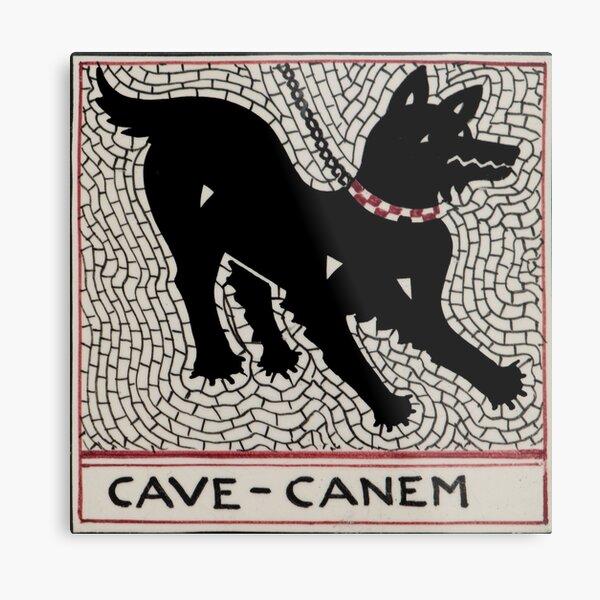 Cave canem Metal Print
