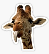 Giraffe with Cute Tongue! Sticker