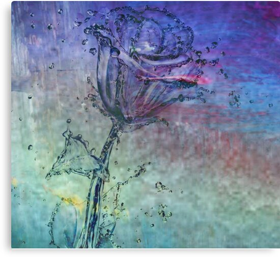 Water Rose - Digital Art Print by avalonmedia