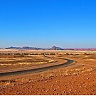 The road to Sossusvlei by Margaret  Hyde