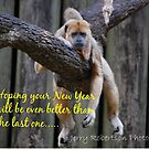 Happy New Year-2016 by zpawpaw