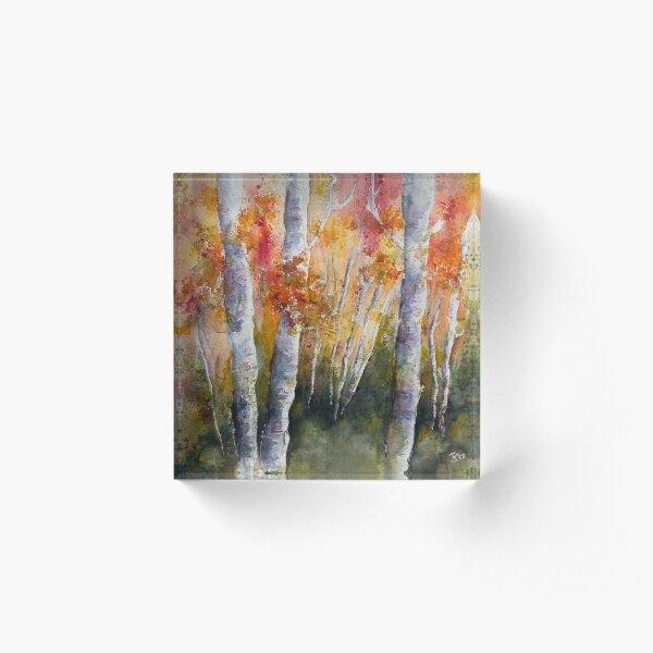 Herbst im Birkenwald Acrylblock