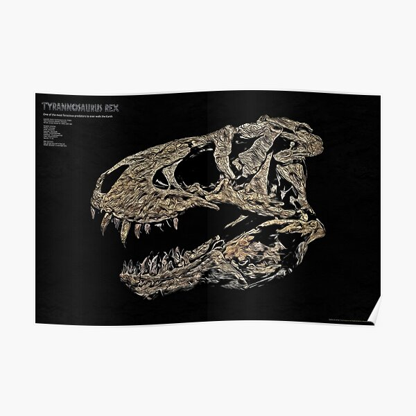 Tyrannosaurus Rex fossil - T-REX Poster
