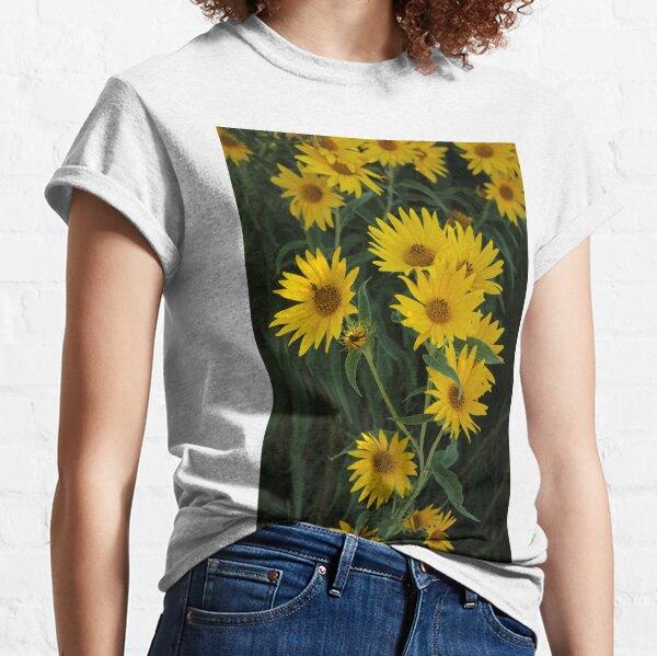 Sunflowers I Classic T-Shirt