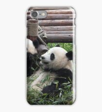 Young Giant Pandas iPhone Case/Skin