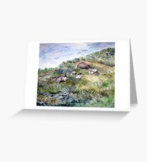 Along the coastline Greeting Card