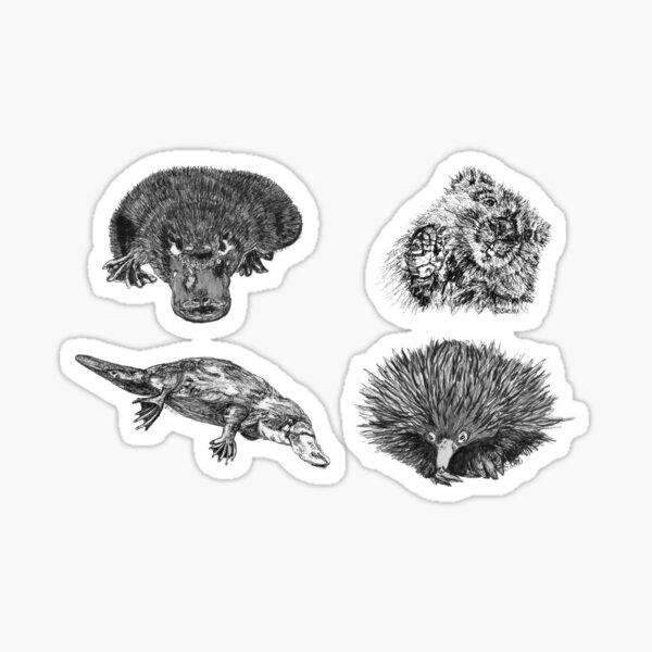 Land 2- 2x Platypus, Echidna and Wombat x 4  Sticker