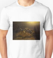 Light play in the Country of Beautiful Horses T-Shirt