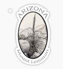 A Desert Scene North of Mount Lemmon, Arizona Sticker