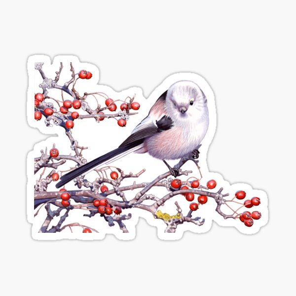 Long-tailed Tit Sticker