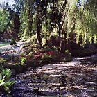 Butchart Gardens Lake by AnnDixon