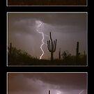 Southwest Desert Thunderstorm Progression by Bo Insogna